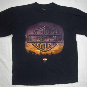 HARLEY DAVIDSON 100% Cotton T Shirt (Men's Large)